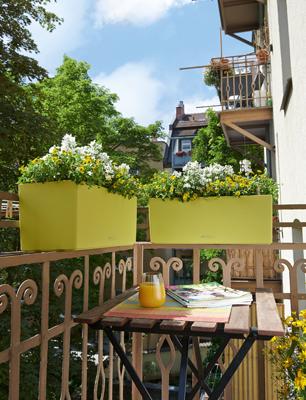 Twee balkonbakken van LECHUZA. BALCONERA Color 50 in pistache groen.