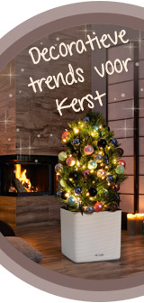 LECHUZA viert Kerst