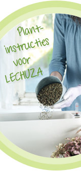 Hoe te planten in LECHUZA?